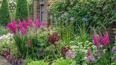 Llena tu jardín de radiantes colores estivales con bulbos de flor