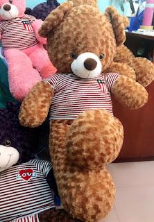 Bán gấu Teddy gấu bông gấu Brown-Quà tặng 20-10, 8-3 ý nghĩa cho bạn gái độc đẹp rẻ