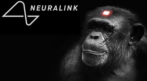 Neuralink stimulates the monkey's brain to play video games