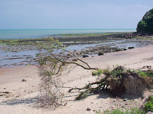 Ständig nagt das Meer am Land