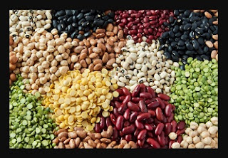 kacang-kacangan-makanan-untuk-program-hamil
