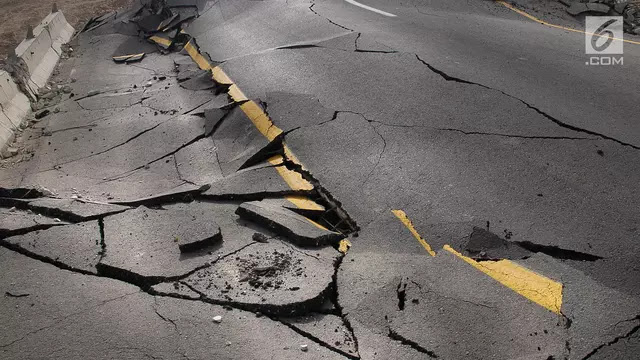 Gempa 7,4 Skala Richter Hantam Utara Selandia Baru