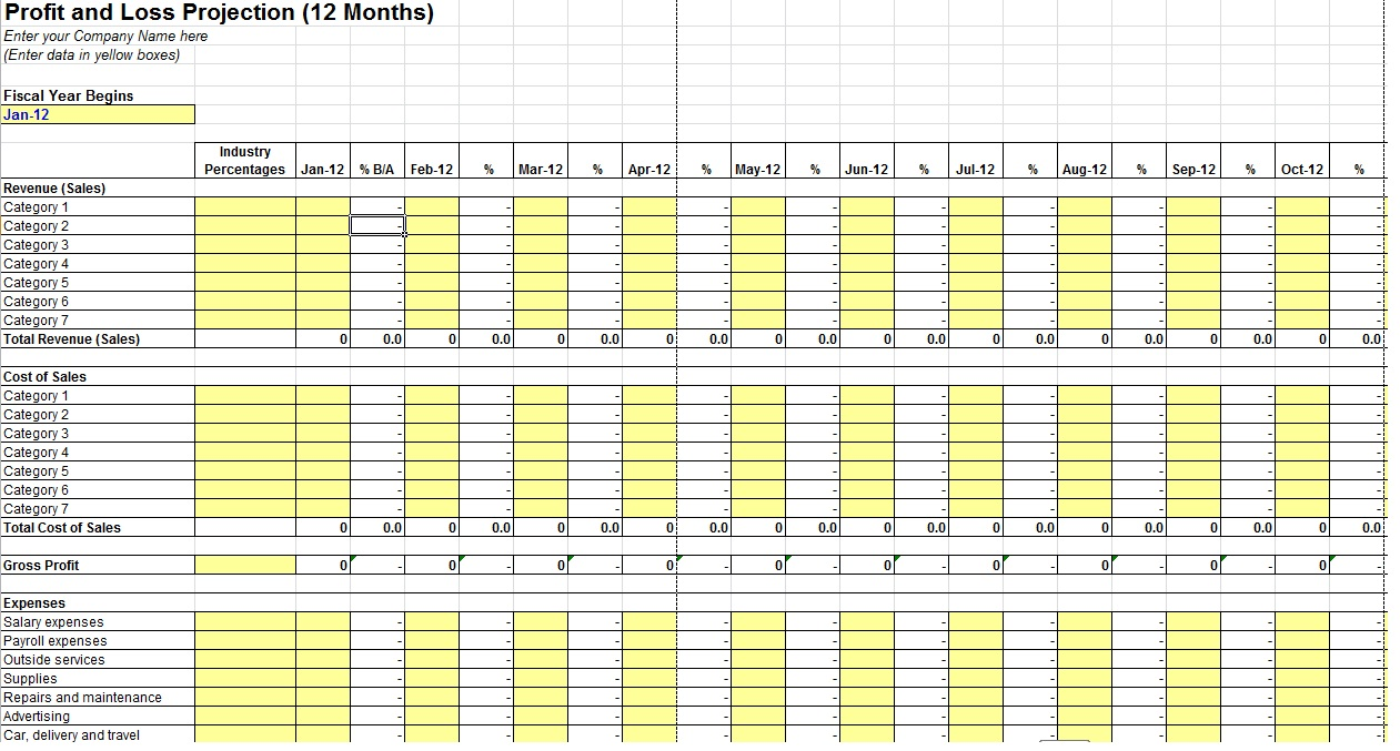 12 Month Profit And Loss Projection Template Sample