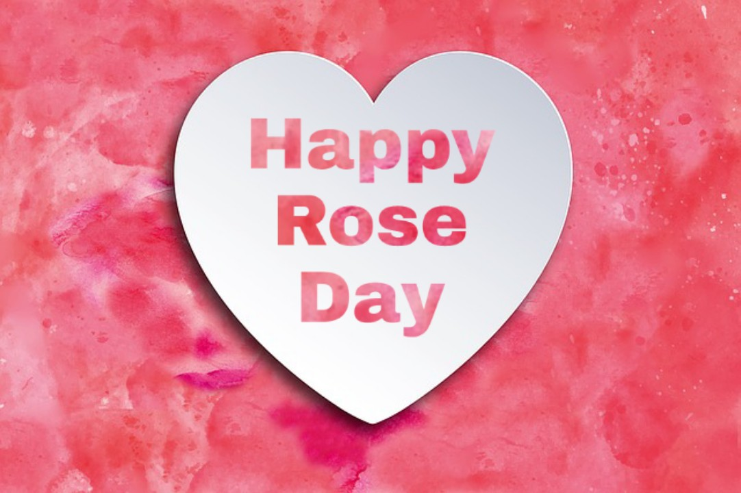 valentine week days list 2020 rose day images