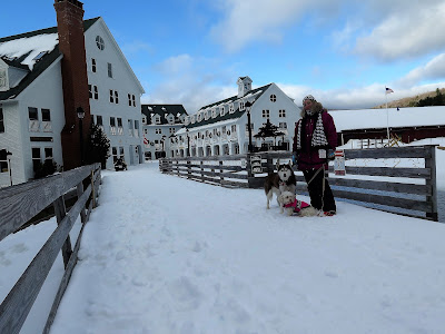 Dog friendly travel; Waterville Valley, New Hampshire