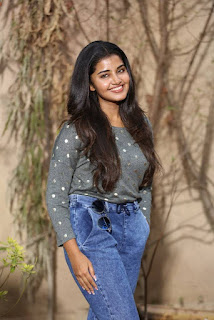 Anupama CC Creations Movie On Location Press Meet Stills 08