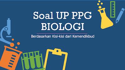 soal up ppg biologi terbaru dan pembahasan