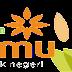LAZIS Muhammadiyah PCM Pedurungan