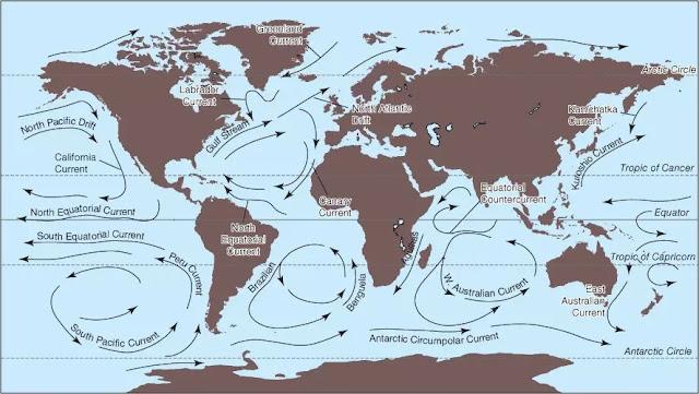 4. Arus permukaan utama dari Samudra Global.