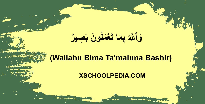 Wallahu Bima Ta'maluna Bashir