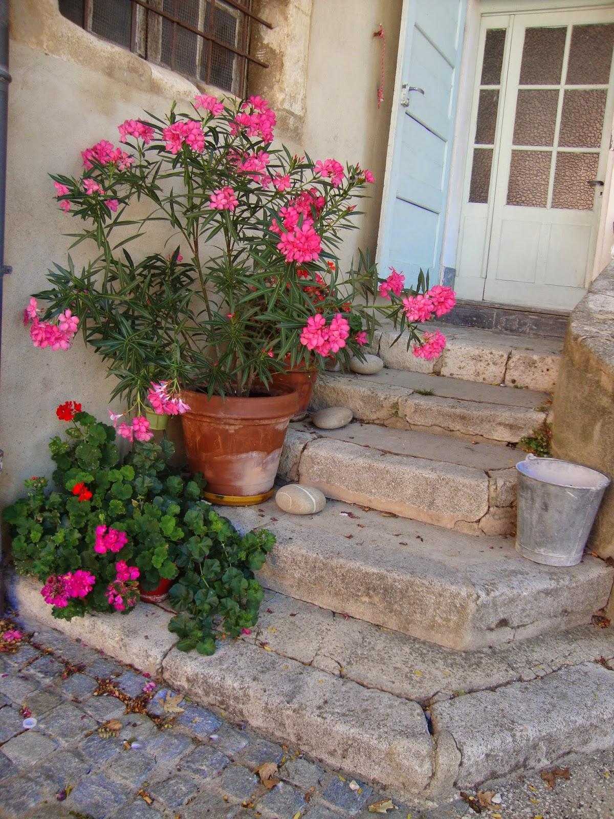 Un piccolo giardino in citt scale fiori ecco altre idee - Scale per giardini ...