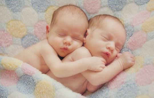 Alif Meylinda: Proses Terbentuknya Bayi Kembar
