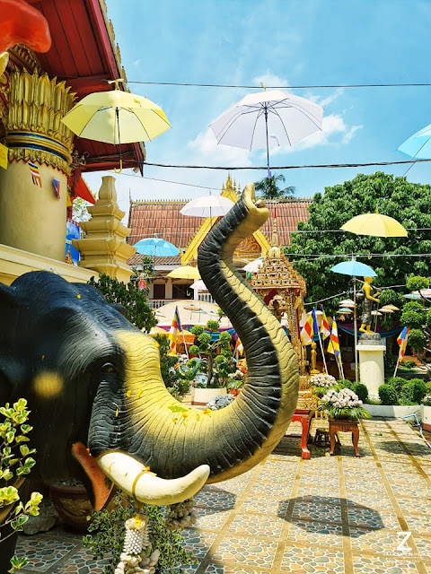 Temple elephant sighting