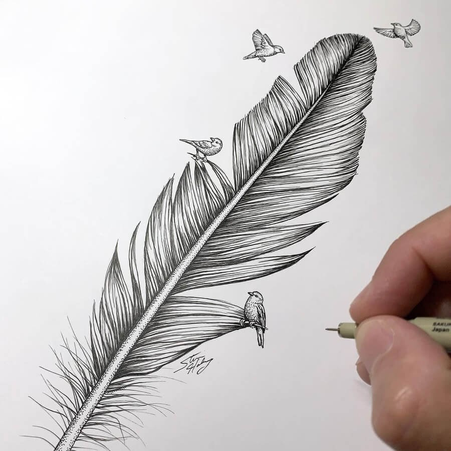 09-Feather-and-birds-Steve-Habersang-www-designstack-co