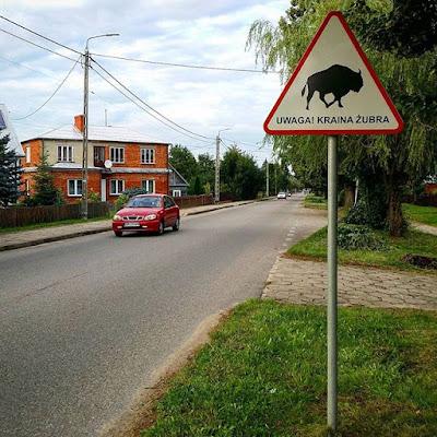 Cartel de bisontes en el pueblo de Bialowieza