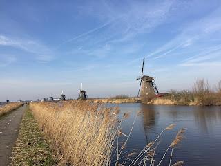 geocaching regio Den Haag