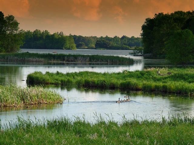 Wisconsin Landscape