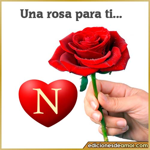 una rosa para ti N