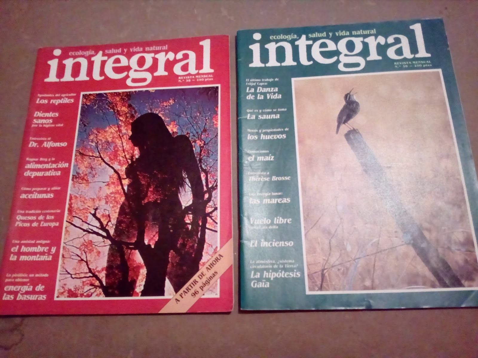 O desv n vintage do pereiro revistas integral - Desvan vintage ...