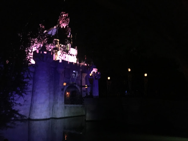 Sleeping Beauty Castle at Night Disneyland