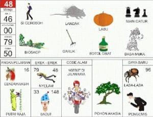 Erek Erek 48 Kode Alam Pohon Akasia