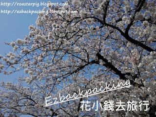 櫻花大道-東京私房賞櫻景點+祕境地圖@背包豬