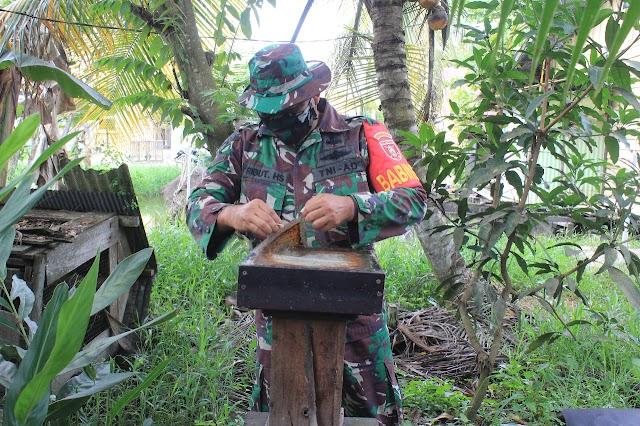 Babinsa Kodim 0906/Tenggarong Kembangkan Madu Kelulut Untuk Tingkatkan Imunitas Tubuh Dimasa Pandemi Covid-19
