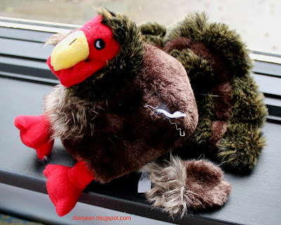 Turkey dog toy with ripped off wing