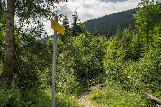 Kleberkopf und Spielberghaus  Wandern in Saalbach 14