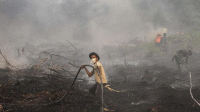 Titik api di Sumatera dan Kalimantan makin banyak, dan menimbulkan kebakaran hutan yang berdampak kabut asap sampai ke luar negeri.