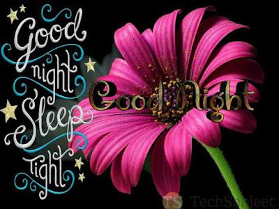 quote good night love