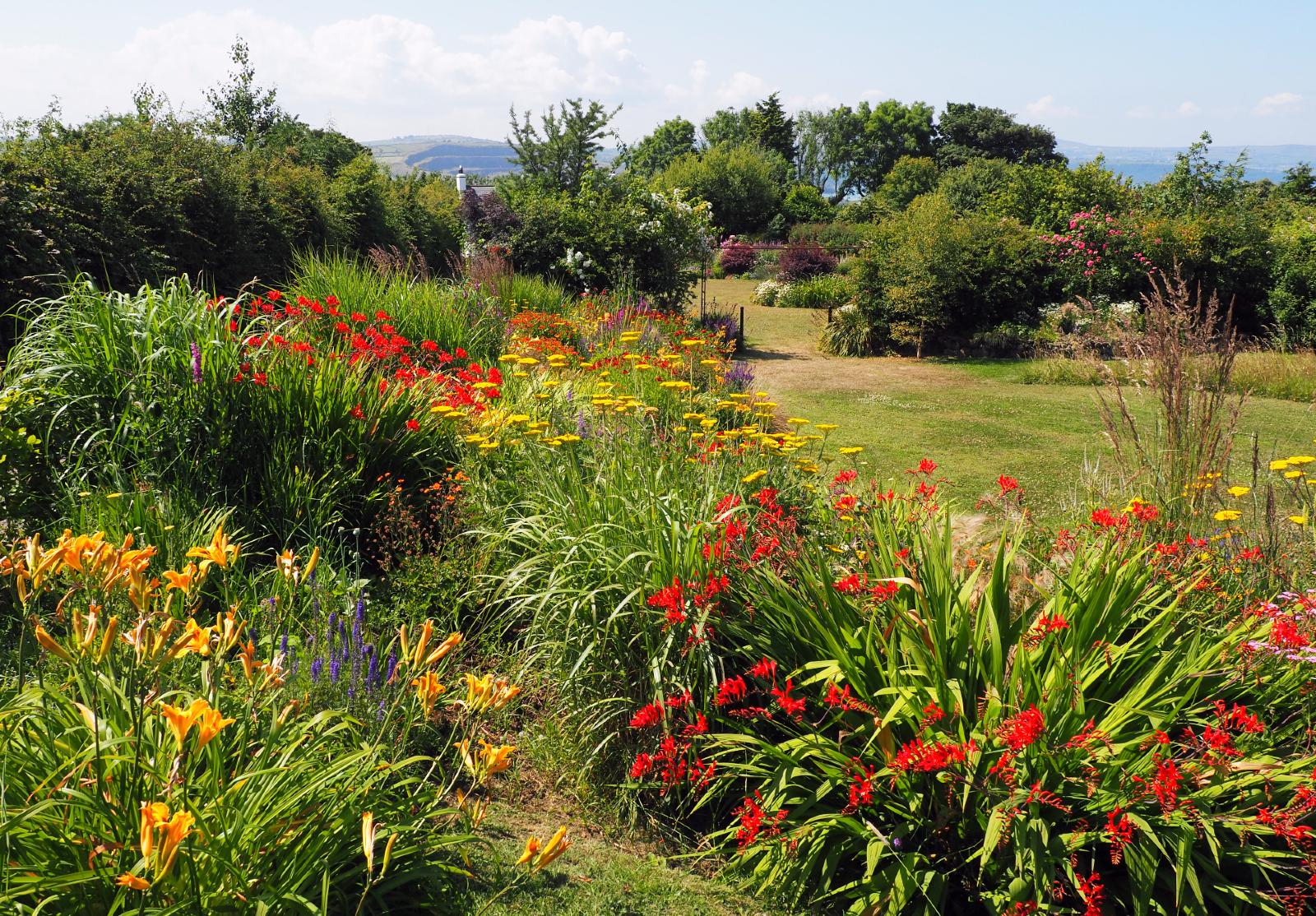 Pełnia lata w Kilcoan Gardens na Półwyspie Magee'a