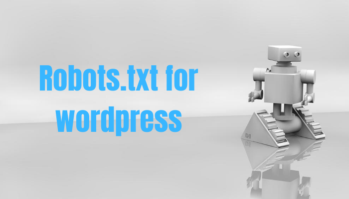 How to Create a robots.txt file in WordPress | Wordpress Robots txt