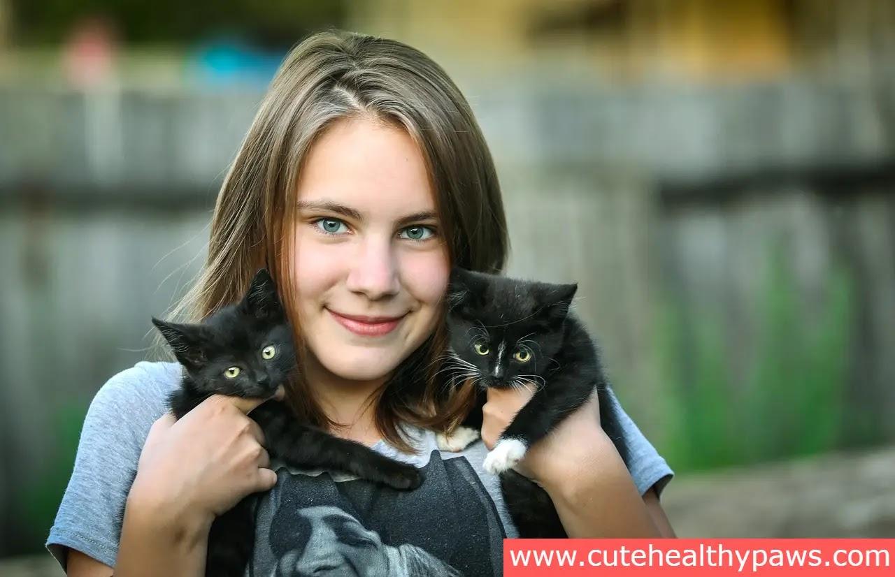 Benefits of raising cats