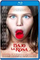 Bajo la Rosa (2017) HD 720p Español