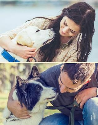 things dogs cant eat pomeranian labrador doberman border collie puppy  cane corso