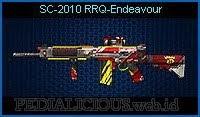 SC-2010 RRQ-Endeavour