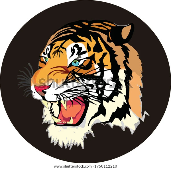 angry tiger face