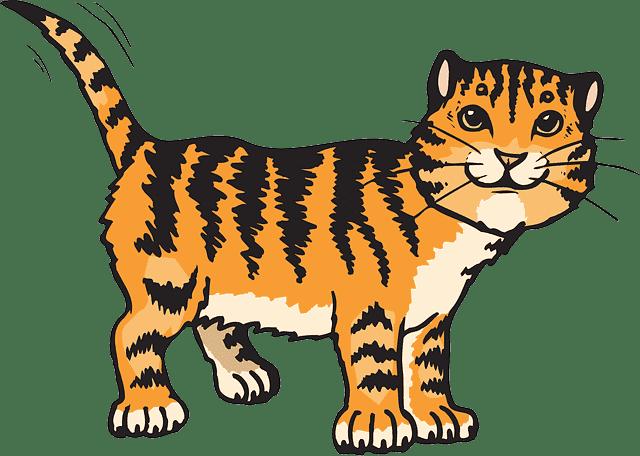 cat images cartoon