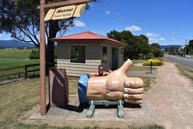 BIG Thumbs Up in Scottsdale   BIG Things Tasmania