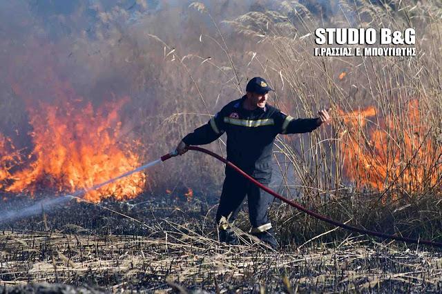 Πυρκαγιά στο Κεφαλάρι Αργολίδας