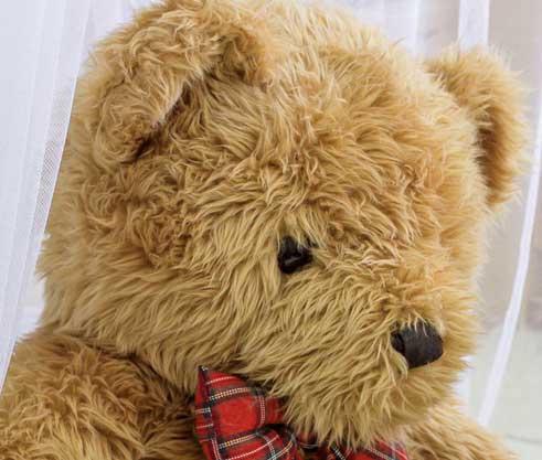Teddy%2BBear%2BImages%2BPics%2BHD25