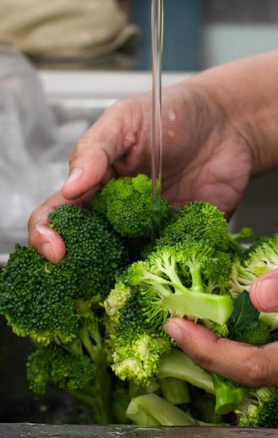 washing broccoli florets photo