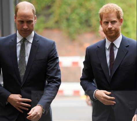 'William and I are on different paths' - Prince Harry acknowledges tensions with his brother
