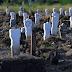 Setiap Hari Ada Pemakaman Covid-19 di Surabaya