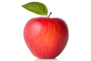 Red Apple 11.0 Fruits N Vegetable Wholesale Software
