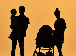 Ограничения материнского капитала