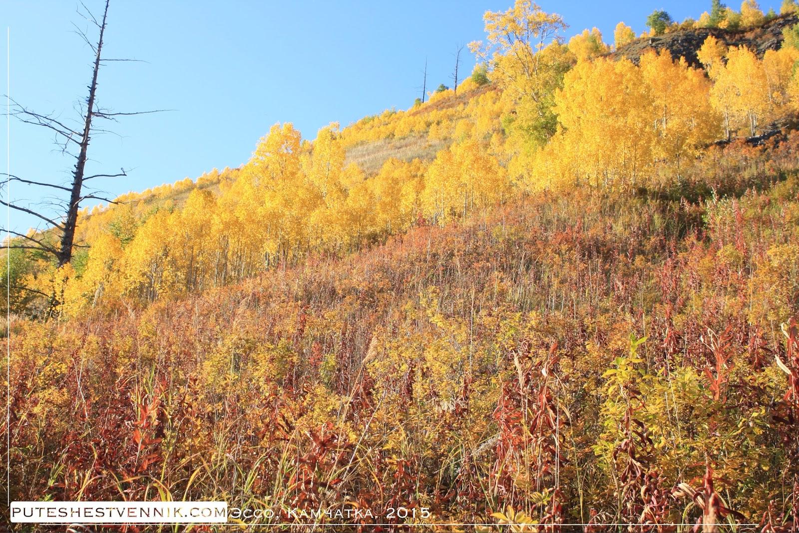 Осенние краски Камчатки