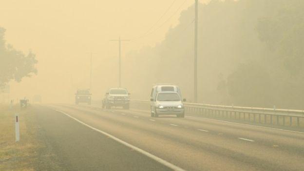 australie,feu,feu australie,feu en australie,feu de brousse australie,incendie,koala,feux,actu,incendies,feu de brousse,actualité,océanie,bateau,animaux,environnement,mallacoota,nouvelle-galles du sud,faune,plage,international,faune australienne,sud-est australie,feux en australie,flammes,incendies en australie,catastrophe naturelle,info,climat,forêt,animal,fuient,koala incendie,climate change,terrain,bateaux,changement climatique,internationale