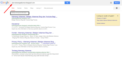 Mamang Adsense - Index Search Engine Google